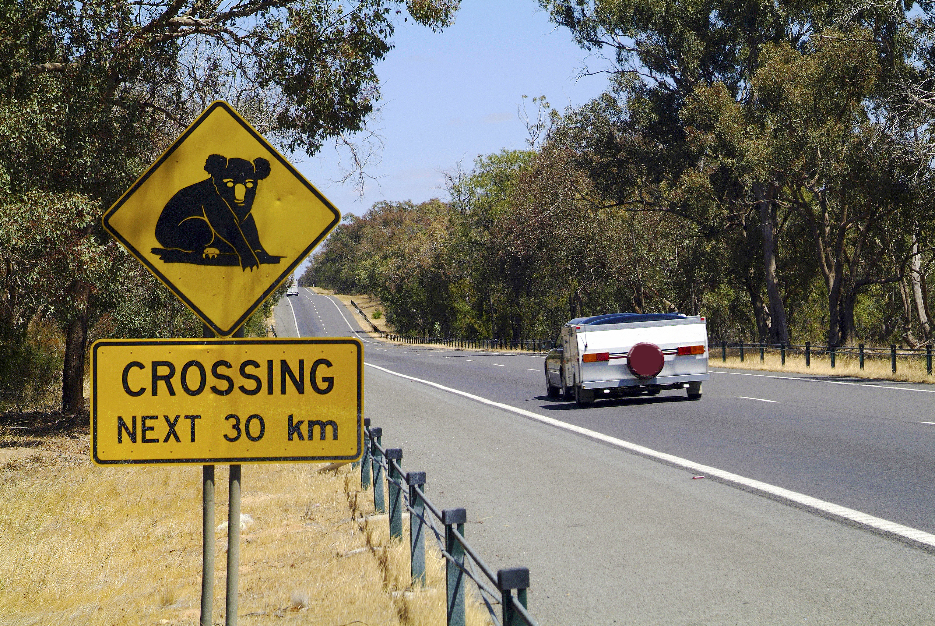 car-towing-caravan-driving-past-animal-crossing