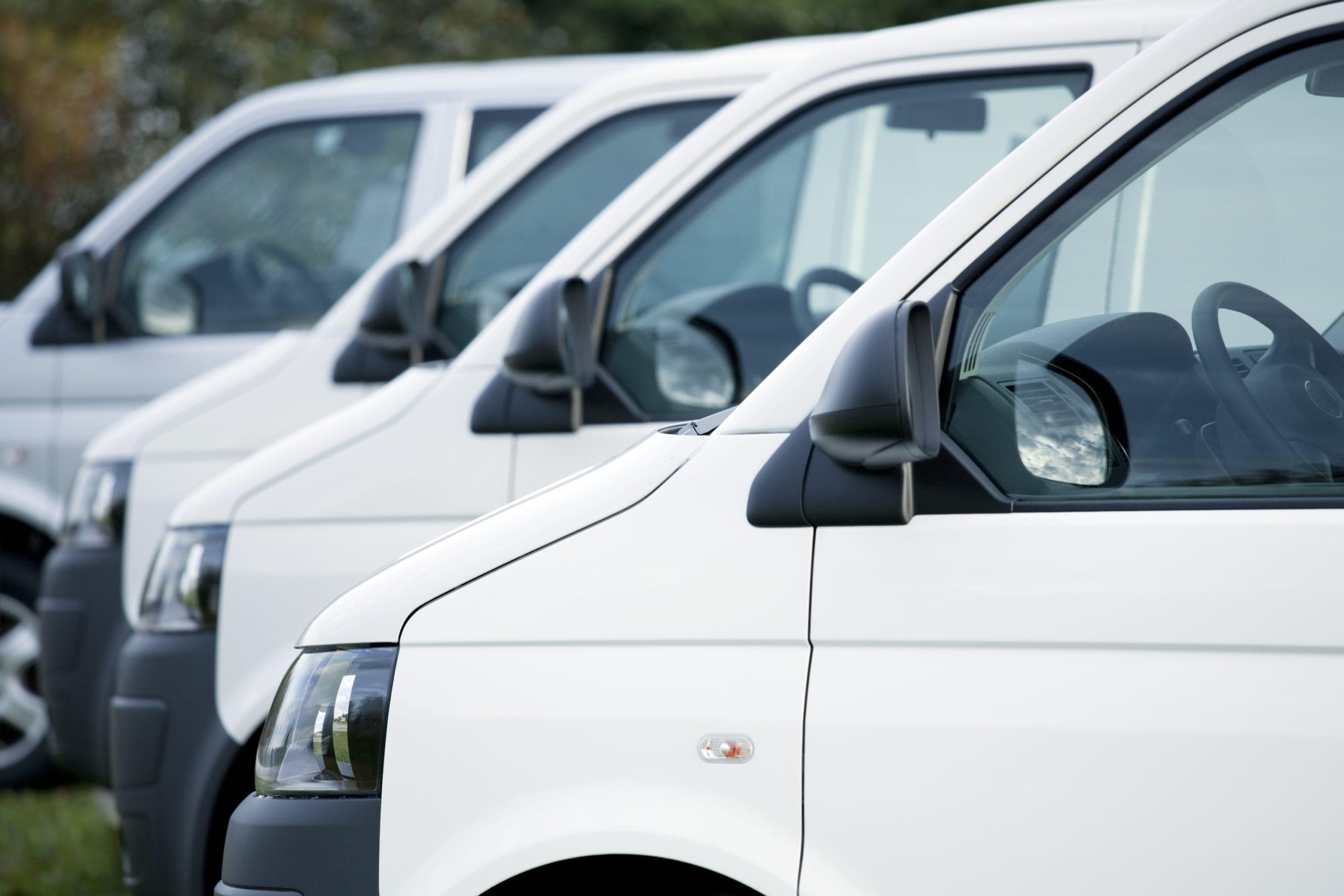 White Vans in Stock